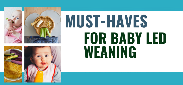 10 Baby-Led Weaning Must Haves
