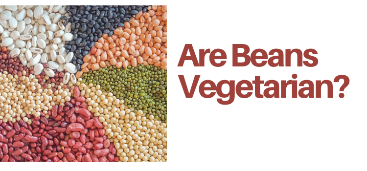 Are Beans Vegetarian?