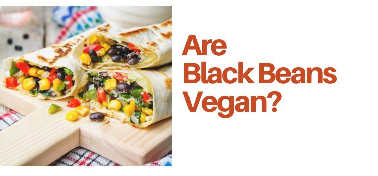 Are Black Beans Vegan?